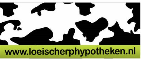 Logo van R.H.L. Finance h/o Loeischerphypotheken.nl