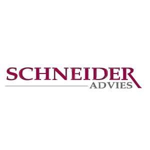 Logo van Schneider Advies